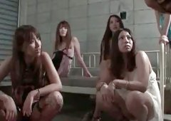 Stunning and beauty asian  is having real orgy