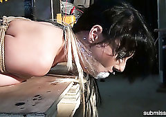 Submissive whore Leyla Gold gets gagged and hogtied tight