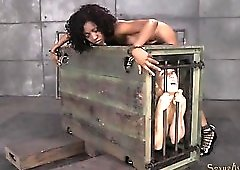 Girl in a cage watches a bound black slut get fucked